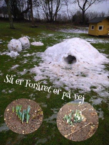 Vinterferie uge 7 Skamstrup Camping